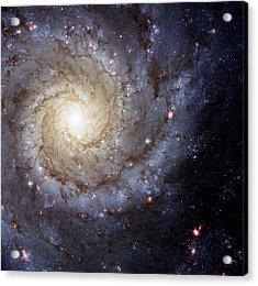 Galaxy Swirl Acrylic Print by Jennifer Rondinelli Reilly - Fine Art Photography