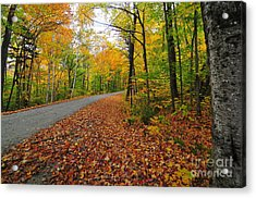 Gale River Loop Acrylic Print by Catherine Reusch Daley