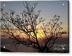 Galilee Sunset Acrylic Print
