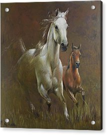 Gallop In The Eyelash Of The Morning Acrylic Print