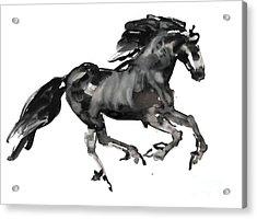 Gallop Acrylic Print by Mark Adlington