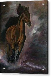 Galloping Acrylic Print by Darlene Pyle
