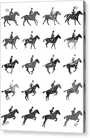 Galloping Gait Terrestrial Locomotion - Bw Acrylic Print by Aged Pixel