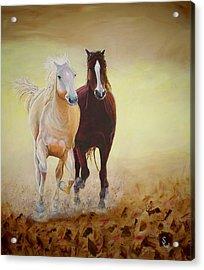 Galloping Horses Acrylic Print