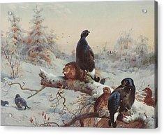 Game Birds  Acrylic Print
