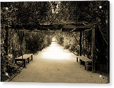 Garden Arbor In Sepia Acrylic Print by DigiArt Diaries by Vicky B Fuller