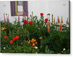 Garden Beauty Acrylic Print by Sharon I Williams