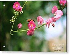 Acrylic Print featuring the photograph Garden Bug by Megan Dirsa-DuBois