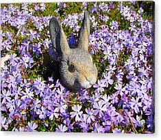 Garden Bunny Acrylic Print