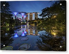 Garden By The Bay, Singapore Acrylic Print