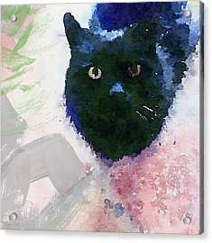 Garden Cat- Art By Linda Woods Acrylic Print by Linda Woods