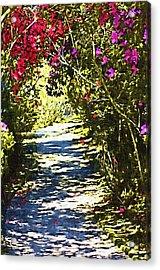 Acrylic Print featuring the photograph Garden by Donna Bentley