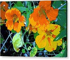 Garden Flavor Acrylic Print