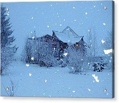 Garden Gallery, Winter 2010 Acrylic Print by Leizel Grant