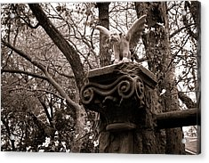 Acrylic Print featuring the photograph Garden Gargoyle  by Toni Hopper