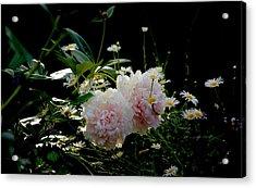 Garden Acrylic Print by Gillis Cone