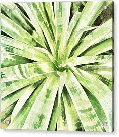 Garden Green Acrylic Print