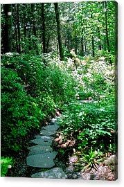 Garden In The Woods Acrylic Print by Deborah Dendler
