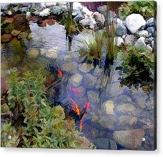 Garden Koi Pond Acrylic Print by Elaine Plesser