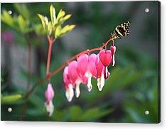 Garden Life Acrylic Print