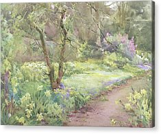 Garden Path Acrylic Print by Mildred Anne Butler
