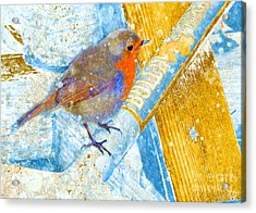 Acrylic Print featuring the photograph Garden Robin by LemonArt Photography