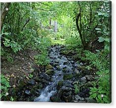 Acrylic Print featuring the photograph Garden Springs Creek In Spokane by Ben Upham III