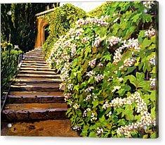 Garden Stairway Tuscany Acrylic Print by David Lloyd Glover