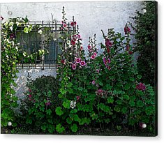 Garden Window Acrylic Print