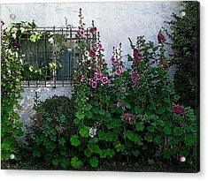 Garden Window Acrylic Print by Kathleen Stephens