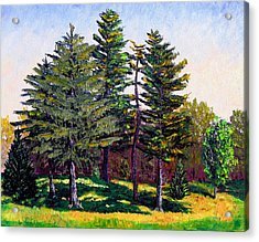 Garfield Trees Acrylic Print by Stan Hamilton
