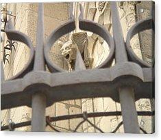 Gargoyle On Notre Dame Acrylic Print by John Julio