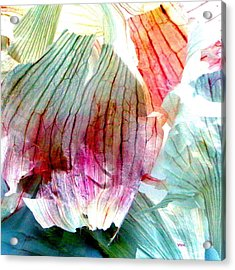 Garlic  Abstract   Series Acrylic Print