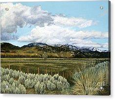 Garner Valley Meadow Acrylic Print