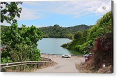 Garzas Lake Road Acrylic Print