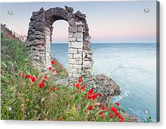 Gate In The Poppies Acrylic Print by Evgeni Dinev