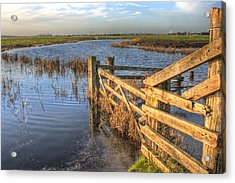 Gate On The Marsh Acrylic Print by Dave Godden