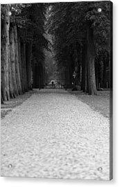 Gated Path Acrylic Print by Edward Myers