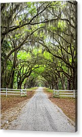 Gated Wormsloe Plantation Acrylic Print