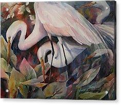 Gathering Egrets Acrylic Print by Sue Zimmermann