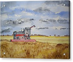 Gathering The Harvest Acrylic Print by Carole Robins