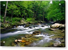 Gatlinburg Stream Acrylic Print