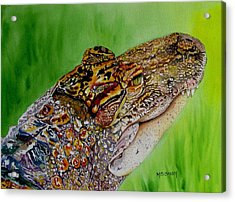 Gator Ali Acrylic Print by Maria Barry
