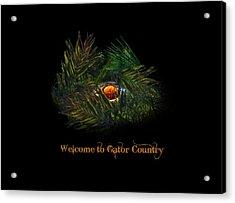Gator Country  Acrylic Print