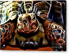 Gazing Turtle Acrylic Print by Mariola Bitner