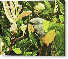 G'day Mate - Lemonlime Acrylic Print by Julie Turner