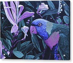 G'day Mate - Midnight Acrylic Print by Julie Turner