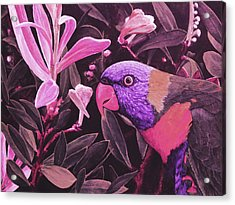 G'day Mate - Rose Acrylic Print by Julie Turner