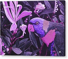 G'day Mate - Violet Acrylic Print by Julie Turner