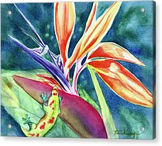 Gecko On Bird Of Paradise Acrylic Print